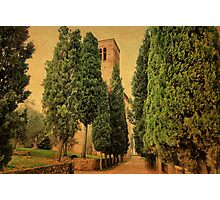 Welcoming Cypress-Sant' Anna in Comprena, Tuscany Photographic Print