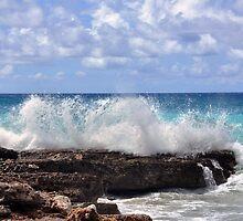 Surf's Up at Boca Catalina  by John  Kapusta