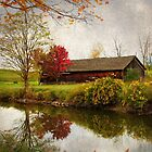 Autumn at the Canal by janetlee