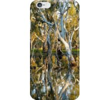 The Swamp iPhone Case/Skin
