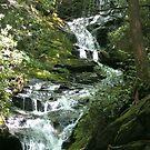 Waterfall, N.C. phone case by Glenn Cecero