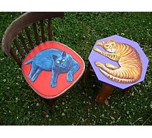 Cat Furniture Photographic Print