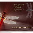 Dragonfly N.5 by Chester  Edwards