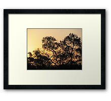 Shadows ... A life of Contrasts  Framed Print