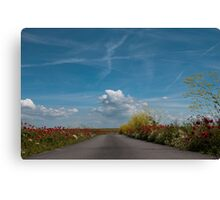 The Road! Canvas Print