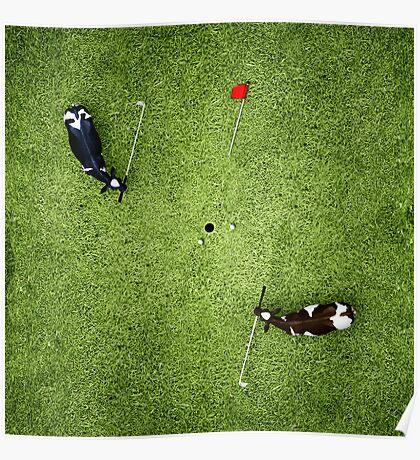 Animal Art - Golfing Cows Poster