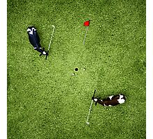 Animal Art - Golfing Cows Photographic Print