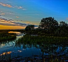 Break of Dawn over Low Country Marsh by Mike Savlen