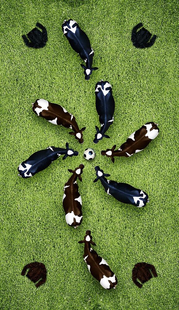 Animal Art - Football Cows by Michael Murray
