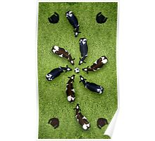 Animal Art - Football Cows Poster