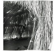 Native American Hut Poster