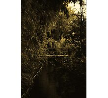 Waterscape 11 Photographic Print