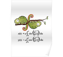 Euler Spiral Poster