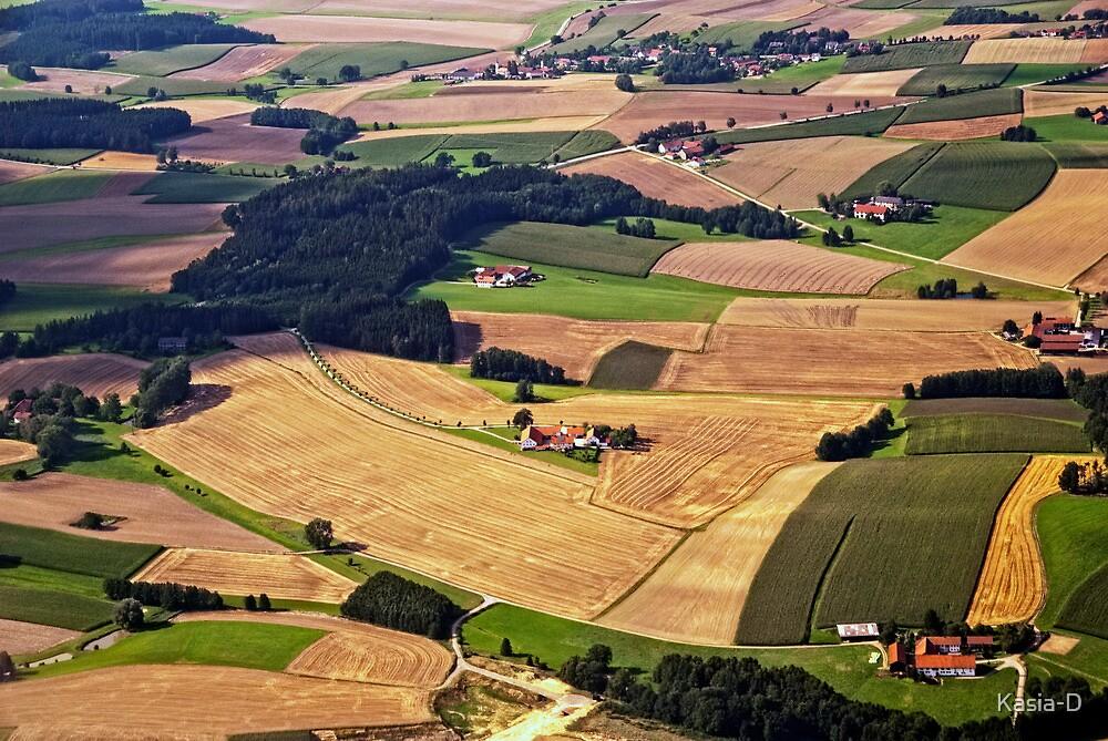 Harvest Time, Bavaria by Kasia-D