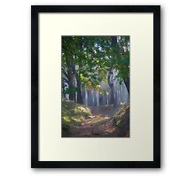 601. ##### MIRACLE FOREST LANDSCAPE . by Brown Sugar . Favorites: 9 Views: 601.  thank you ! Framed Print