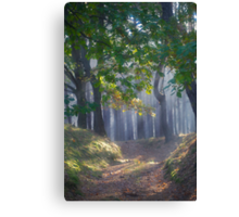 601. ##### MIRACLE FOREST LANDSCAPE . by Brown Sugar . Favorites: 9 Views: 601.  thank you ! Canvas Print
