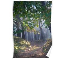 601. ##### MIRACLE FOREST LANDSCAPE . by Brown Sugar . Favorites: 9 Views: 601.  thank you ! Poster