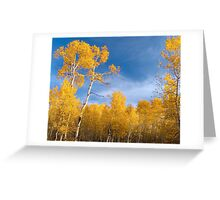 Evening in Aspens Greeting Card