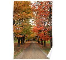 Fall Wonderland I Poster