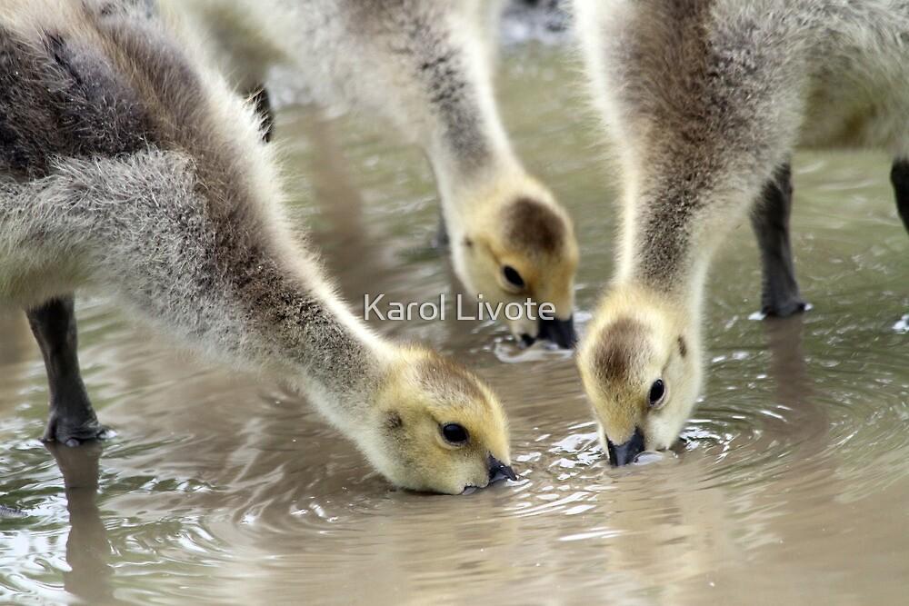 Siblings Having a Drink by Karol Livote