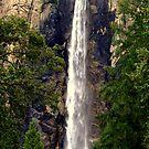 """Roar of the Falls"" by Lynn Bawden"
