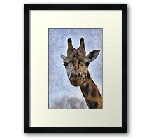 Did you want something down there? Framed Print
