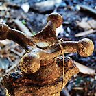 Old Rusty Water Spigot by Marcia Rubin