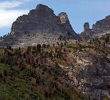 Ancestor Peak by teresalynwillis