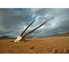 Oryx Skull in the Namib Desert - Namibia Photographic Print