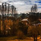 Mount Torrens Late Autumn  by Gerijuliaj