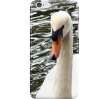 Swan (iPhone Case) iPhone Case/Skin