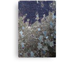 Rock Lichen  Canvas Print