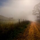 Retreat Valley Road, Gumeracha early morning in Autumn by Gerijuliaj