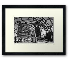 Irregular Shell Framed Print