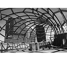 Irregular Shell Photographic Print