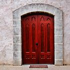 The Door by StopGo