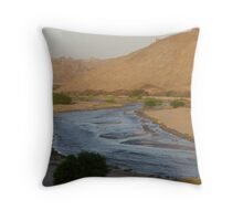 Flash Flood in Namib Desert - Namibia Throw Pillow