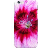 Pretty Flower (iPhone Case) iPhone Case/Skin