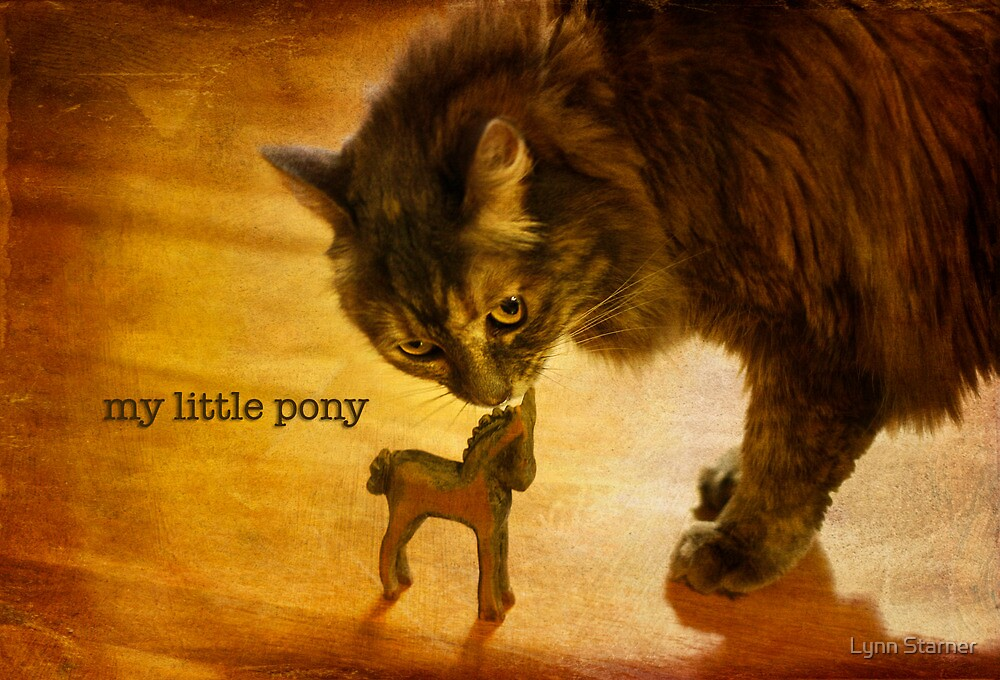 My Little Pony by Lynn Starner