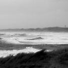 denmark waves by Heike Nagel
