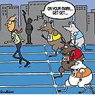 It's a rat race by Tim Mellish