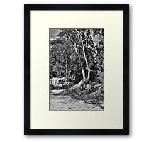 HDR Black and White Framed Print