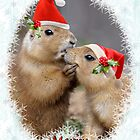 Christmas Kiss by Krys Bailey