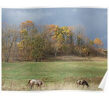 Grazing Under Stormy Skies Poster