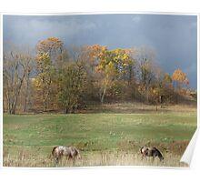 Grazing Under Stormy Skies Poster