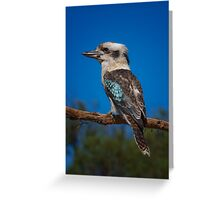 Kookaburra Greeting Card