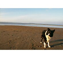 Beached Indy Photographic Print