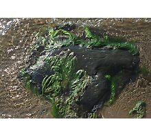 Rock underwater Photographic Print