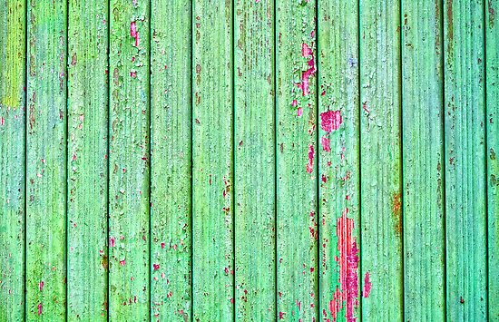 Green plank door by Silvia Ganora