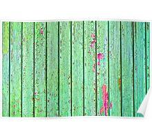 Green plank door Poster